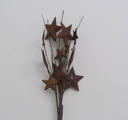 Primitive Rusty Star Berry Pick