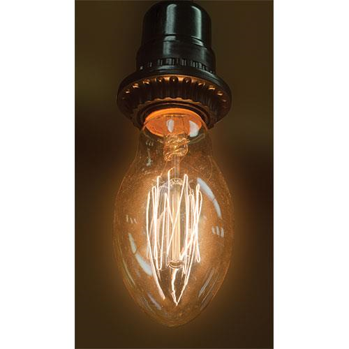 Vintage Inspired Edison Style Primitive Light Bulb - Greenwich