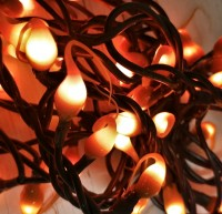 Rustic Pumpkin Spice Autumn / Halloween Hand Dipped Light Strand