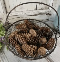 Craft / Decor Small Pinecones - Bag of 25